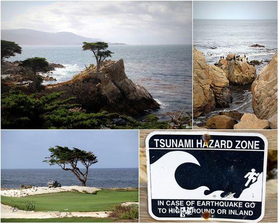 Slices of Heaven: Road-Trip Kalifornien - auf der Highway 1 von Monterey bis Santa Barbara - Teil 3