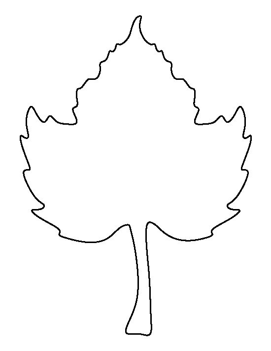 Beech leaf pattern Use the printable outline for crafts, creating - leaf template