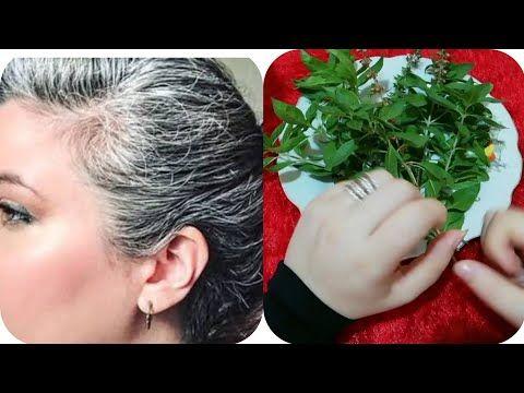 هذا هو علاج النسيان المكون المعجزة لتقوية الذاكرة و زيادة التركيز و سرعة الحفظ مع دعاء للنجاح Youtube Beauty Beautiful Rose Flowers Hair