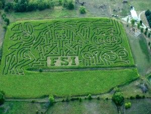 Corn mazes are a great way for the whole family to spend a fall afternoon!