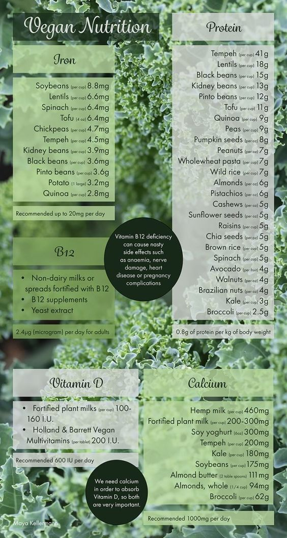 Vegan nutrition guide | RDA for B12, Vitamin D, Iron, Protein and Calcium + where to get it (from Vegan Boobs)