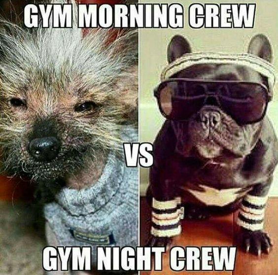 Good Morning Gym : Gym morning crew vs night lol pretty much sums
