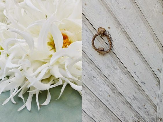 Blüten ––––––aromabrot