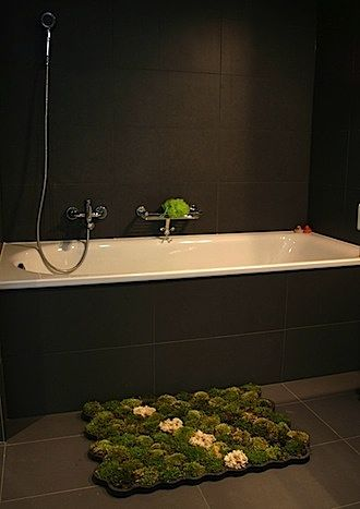 a moss bathmat! the humidity of the bathroom allegedly keeps the moss thriving, so it requires little maintenance.