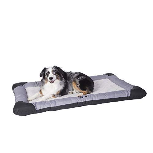 Sealy Chew Resistant Quilted Memory Foam Heavy Duty Crate Pad Gray Bla Dog Bed Large Memory Foam Crates