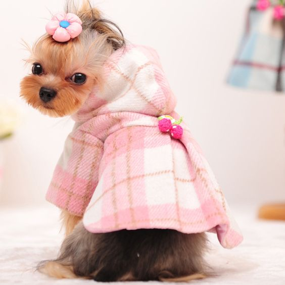 Too Cute Warm Plaid Overcoat With Hood Windbreaker for Dogs and Cats Pink Plaid Coat or Blue Plaid Coat Available in Sizes: XS - XL Please Allow 3-4 Weeks for Delivery
