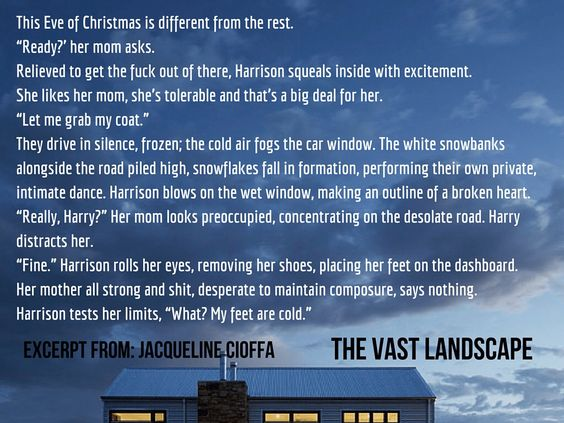 """""""Snow Drifts"""" - #excerpt from The Vast Landscape by @GravityImprint author @JackieCioffa #Booktrope #vignette #LitFic #Saga #family #love #redemption #selfdiscovery"""