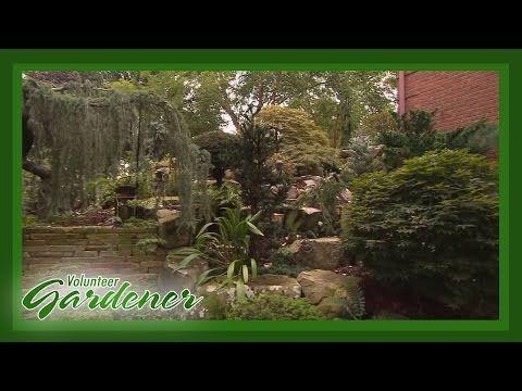 136 Landscape Vignettes Into Cohesive Design Volunteer Gardener Youtube Shade Garden Garden Design Landscape
