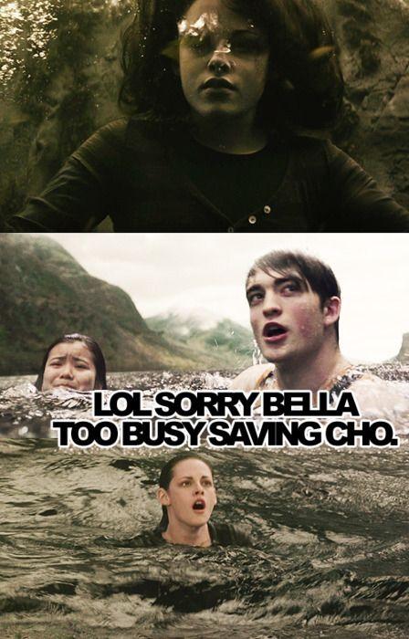 Harry Potter/Twilight lol sorry bella too busy saving cho