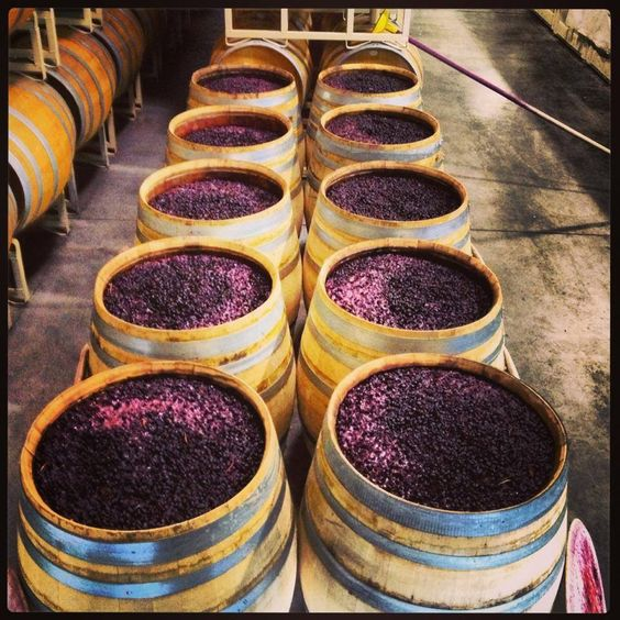 Sure, it says that your wine has been aged in French oak barrels -- but how can you be sure? Are you a victim of wine barrel fraud? http://www.snooth.com/articles/oak-barrels-for-wine-5609/