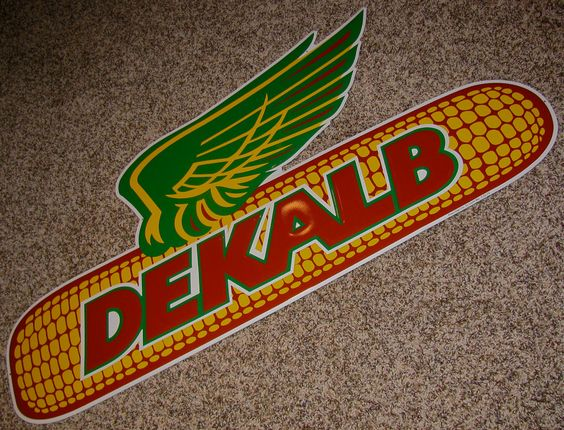 What are some different varieties of Dekalb corn seed?