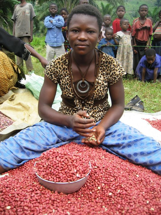 Seed fairs help ensure a good harvest for the communities we serve. #Africa #Humanitarian