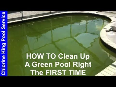 How To Clean A Green Pool Chlorine King Pool Service Youtube