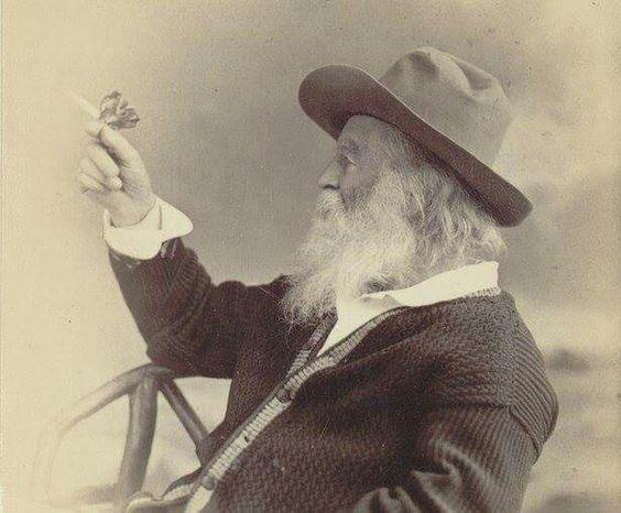 Walt Whitman 1877