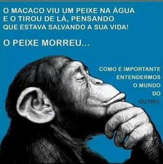 Macaco * Peixe e mundo