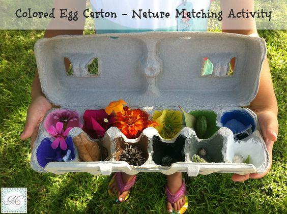 Mejia Mamma: Colored Egg Carton - Nature Matching Activity