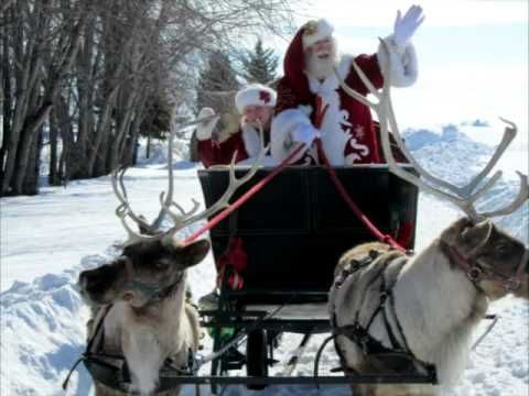 Santa Sleigh Rides For Hire With Real Reindeer Now You