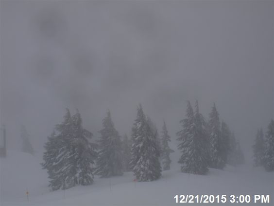 main real-time visibility image
