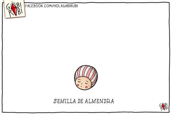 semilla de Almendra