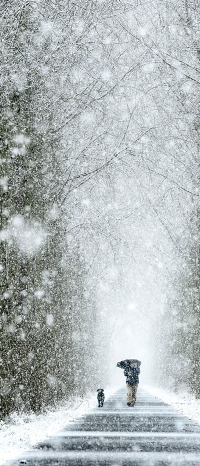 """expression-venusia: """"Winter Walk Expression Photography """""""