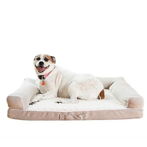 Armarkat Memory Foam Model D07b Dog Bed 35 L X 28 W X 8 H Petco Dog Sketch Dog Bed Petco