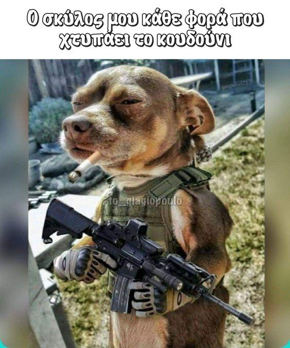 Ο σκύλος μου κάθε φορά | to_giagiopoulo
