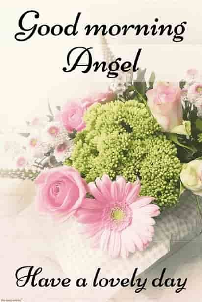 Best Good Morning Hd Images Wishes Pictures And Greetings Good Morning Flowers Good Morning Angel Good Morning Images