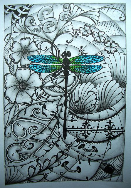 dragonfly and lots of good stuff