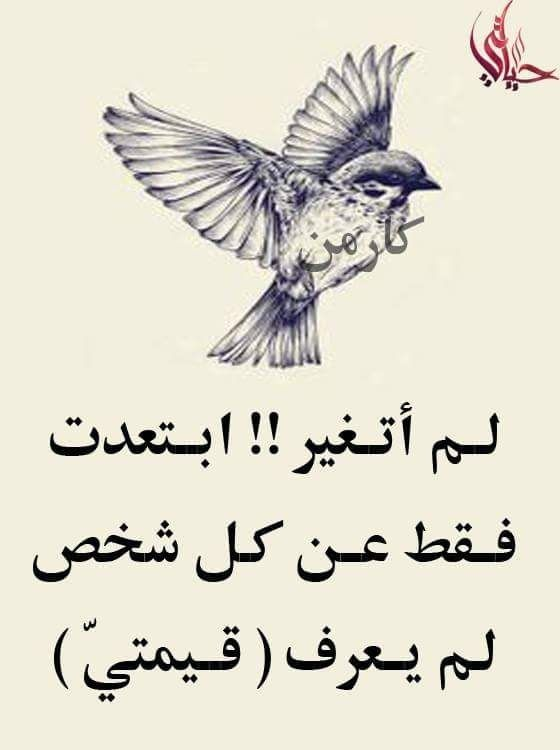 Pin By فاتنة الورد On Quotes Motivational Phrases Arabic Quotes Arabic Words