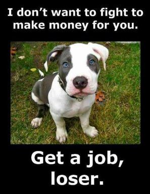 from originator and I concur::  Yaa, get a job loser!!!! Greedy Backyard breeders, despicable puppy mill breeders and the low-life pond scum who fight Pit Bulls to make a buck need to get off their lazy butts and get a real job (and not exploit the dogs)!