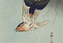 Ohara Koson swallows diving