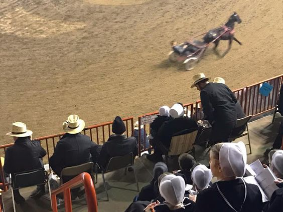 AMISH DISCOVERIES: Amish Horse Racing