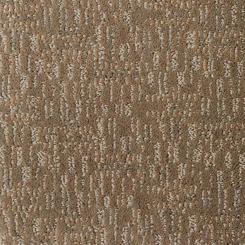 Whitewash In 2020 Beautiful Carpet Hardwood Tile Flooring