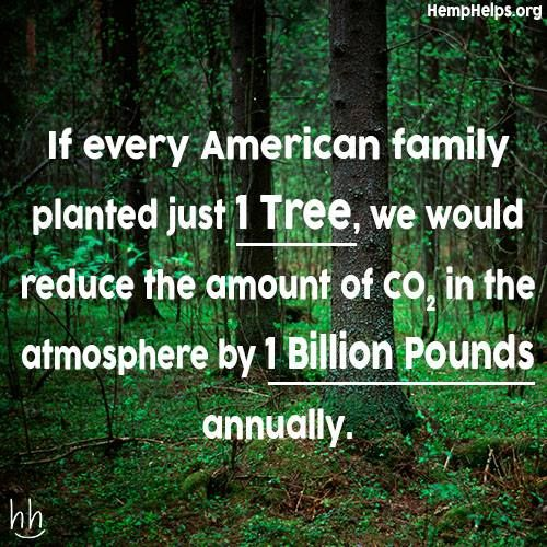 [plantabillion.org. April 24, 2015 is Arbor Day. Plant a tree and/or join the Arbor Day Foundation. For a membership fee of $10, they will plant ten trees in an endangered forest in your honor.] * * AWESOME.