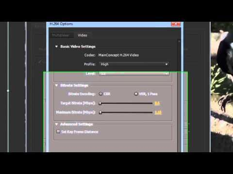Adobe After Effects CS5/CS6 - Save(Export) Video [Tutorial] - YouTube ...
