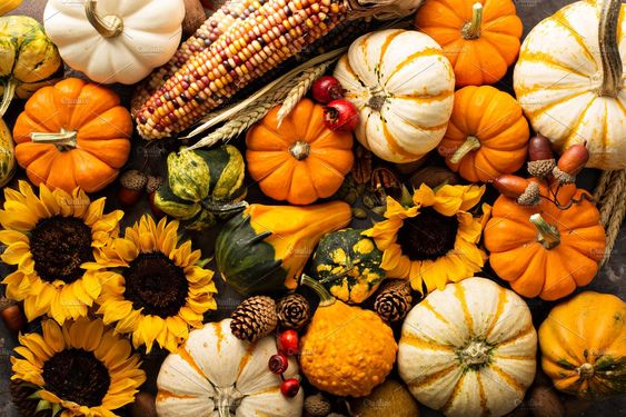Fall background with pumpkins , #sponsored, #pumpkin#background#Fall#shot #Ad