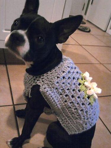 Ravelry: Theresapg's granny square dog sweater