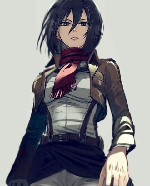 Mikasa Ackerman Attack On Titan Anime Attack On Titan