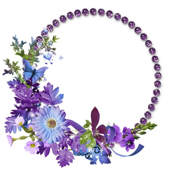 Free Flowers Graphic Frames | Beautiful Purple Round Flowers Transparent Frame: