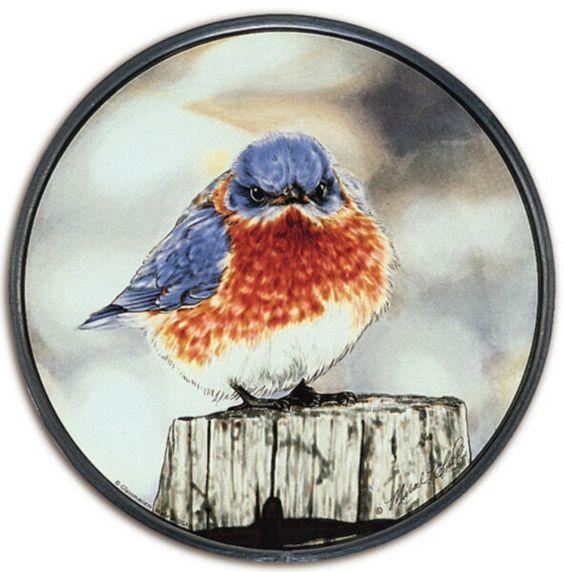 Mad Blue Bird