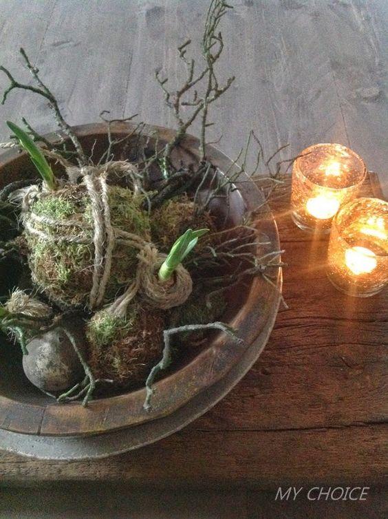 Bloembollen in een schaal huis pinterest for Huis inrichten op schaal