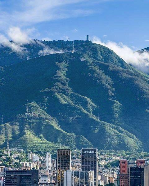 Caracas esa convulsionada y muchas veces áspera capital es además una ciudad llena de vida y naturaleza a donde quiera que mires. Compartimos la ciudad con un inmensa variedad de especies de plantas y animales que hacen de Caracas una ciudad única en la que puedes deleitarte con el vuelo de decenas de guacamayas o los encendidos tonos de los árboles en flor. Eso aunque pase desapercibido para la mayoría de nosotros no es algo común. Para que tengas una idea de esa rica variedad de vida solo en