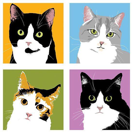 Kết quả hình ảnh cho domestic short-haired cat