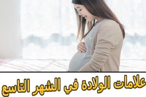 علامات الولادة في الشهر التاسع Bean Bag Chair