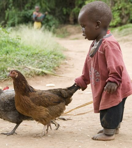 little African baby. best thing I've seen today...little animal rights advocate.: