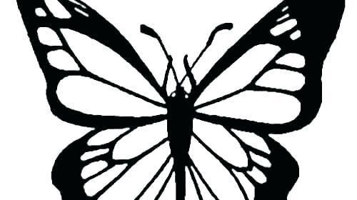 Monarch Butterfly Coloring Page Coloring Monarch Butterflies