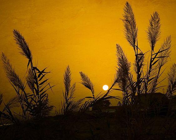 Orange Sunset on the Beach, Greece, Travel Photography, Home Decor, Shabby Sky, Crete, Europe, Fine Art via Etsy