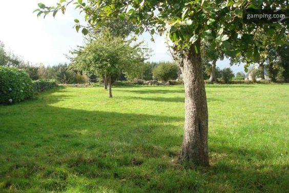 [Gamping] Plouguenast, Bretagne // C'est une prairie plantée de quelques pommiers (nous faisons du cidre). Le terrain de 3000 m2 jouxte notre maison principale, séparée par une haie. L'ensemble fait partie d'une ferme typiquement bretonne implantée depuis 2 siècles...