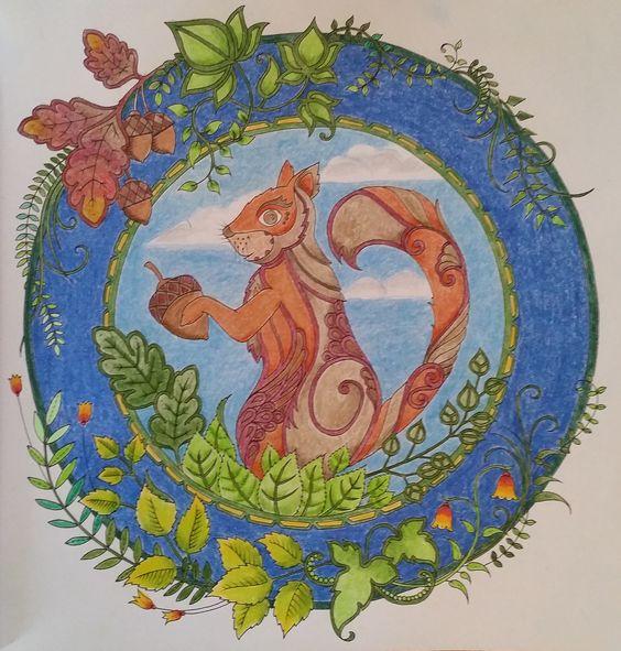 Squirrel--Enchanted Forest--Johanna Basford