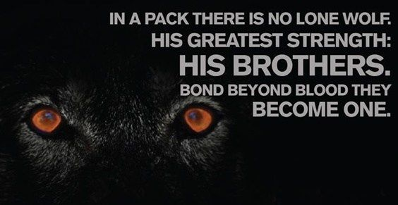 The 100 Greatest Brother Quotes And Sibling Sayings Wolf Pack Quotes Lone Wolf Quotes Brother Quotes